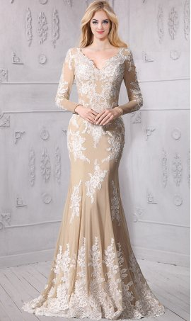 Charming v neck long sleeved lace applique mermaid Dress Gown