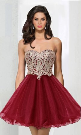 Chic breathtaking embroidered lace appliques short tulle Prom Formal Evening Dress Gown