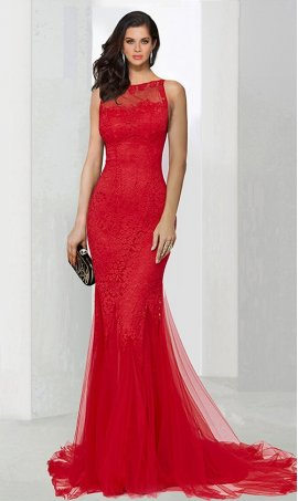 Chic absolutely stunning illusion high neck floor length lace tulle mermaid Dress Gown