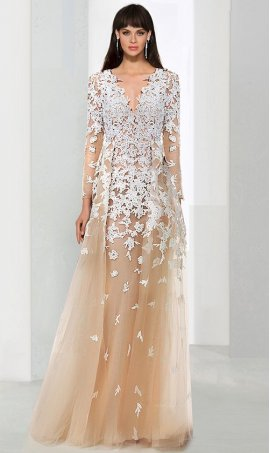 Chic breathtaking long sleeve lace applique deep v neck tulle formal Dress Gown